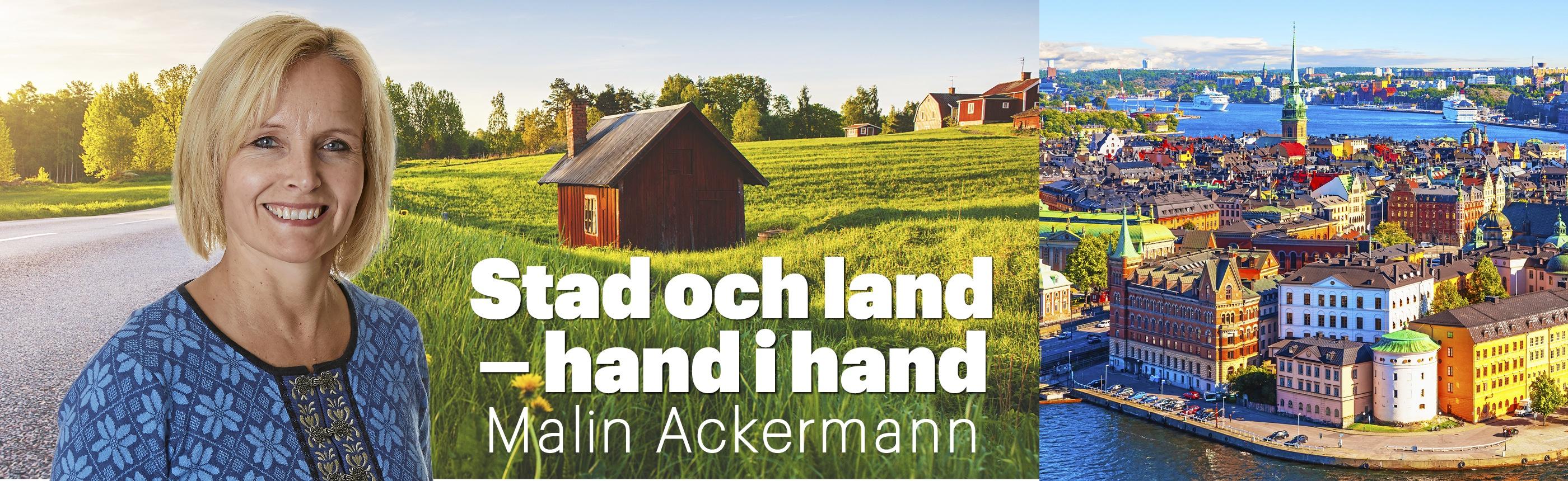 Malin Ackermann blogg